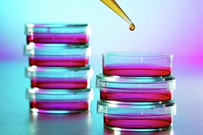 Pipette Dropping Liquid Into Petri Dish Art Print