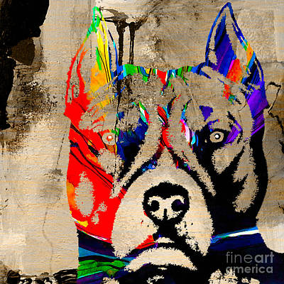 Bull Terrier Mixed Media - Pitbull by Marvin Blaine