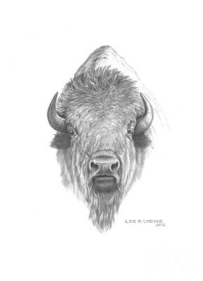 Bison Drawing - Plains Buffalo by Lee Updike