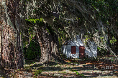 Photograph - Plantation Cabin by Dale Powell