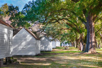 Photograph - Plantation Slave Cabins by Dale Powell