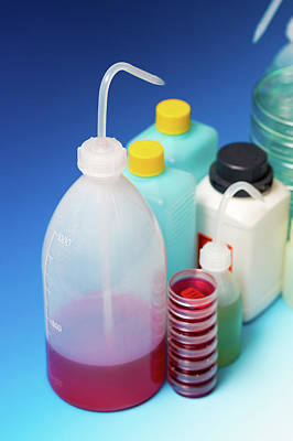 Plastic Dispensing Bottles And Containers Art Print by Wladimir Bulgar