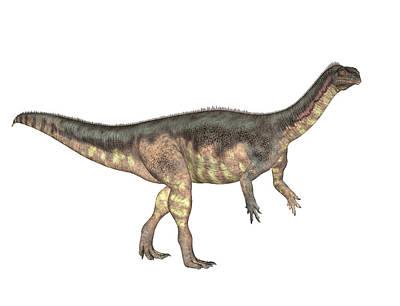 Paleozoology Photograph - Plateosaurus Dinosaur by Friedrich Saurer