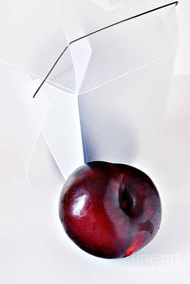 Plum Art Print by HD Connelly