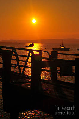 Plymouth Harbor Sunrise Print by Catherine Reusch  Daley