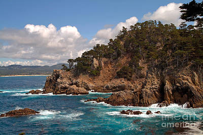 Photograph - Point Lobos by Charlene Mitchell