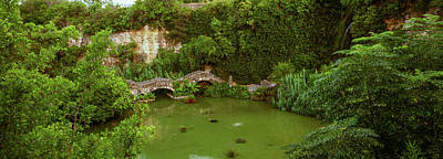 Pond In Japanese Tea Garden, San Art Print by Panoramic Images