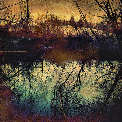 Photograph - Pond In Winter by Paul Cutright