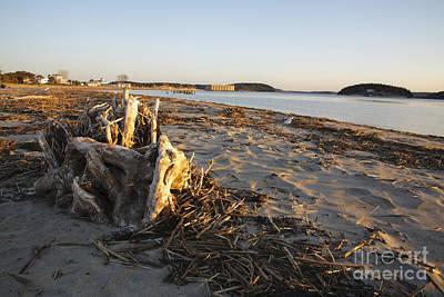 Popham Beach Photograph - Popham Beach State Park - Phippsburg Maine Usa by Erin Paul Donovan