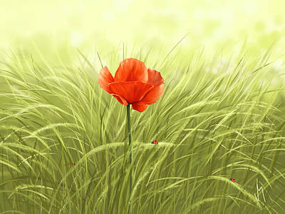 Poppies Field Digital Art - Poppy by Veronica Minozzi