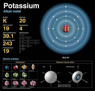 Potassium Art Print by Carlos Clarivan