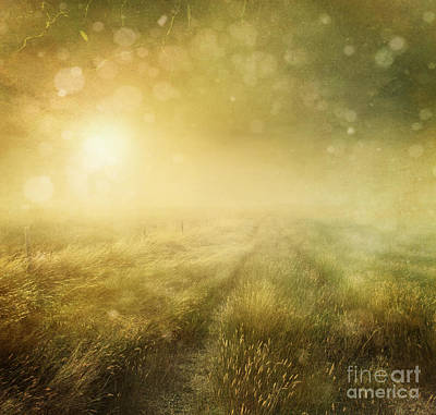 Photograph - Prairie Grasses With Vintage Color Filters by Sandra Cunningham