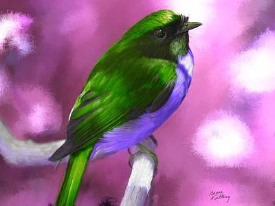 Bird Painting - Pretty Bird by Bruce Nutting