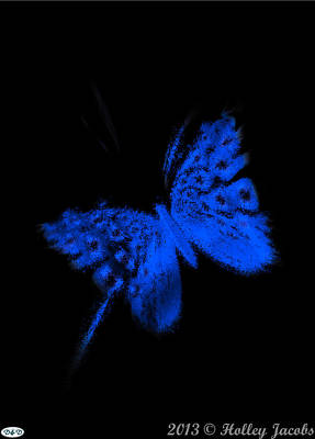 Digital Art - Pretty In Black Blue by Holley Jacobs