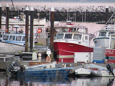 Provincetown Harbor Original by Amy Chesnut