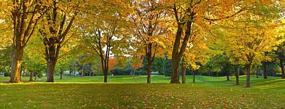 Fallen Leaf Photograph - Public Park In Autumn Colors, Gresham by Panoramic Images