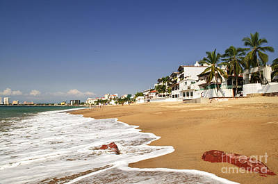 Palm Trees Photograph - Puerto Vallarta Beach  by Elena Elisseeva