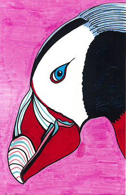 Puffin Drawing - Puffin by Don Koester