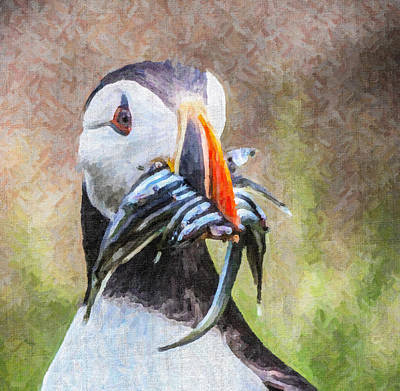 Puffin Digital Art - Puffin With Sandeels by Liz Leyden