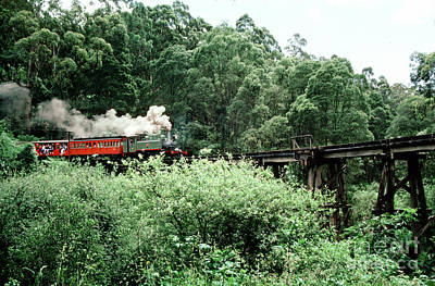 Travel Rights Managed Images - Puffing Billy steam railway locomotive on a bridge Royalty-Free Image by Wernher Krutein