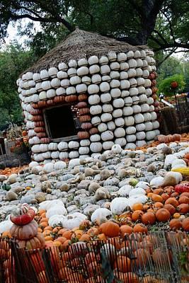 Digital Art - Pumpkin Land by Carrie OBrien Sibley