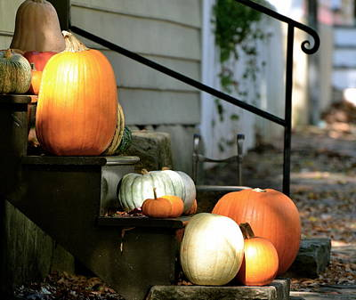 Photograph - Pumpkin Collection by Sue McGlothlin