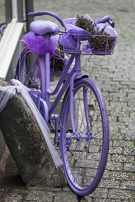 Limburg Photograph - Purple Bicycle On Street, Limburg An by Panoramic Images