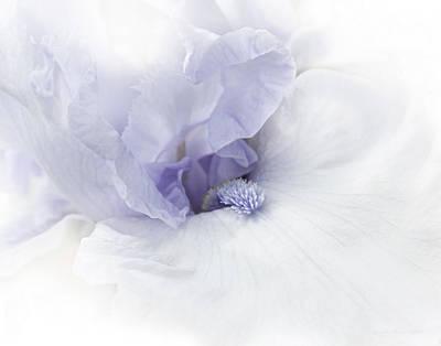Photograph - Purple Iris Flower  by Jennie Marie Schell