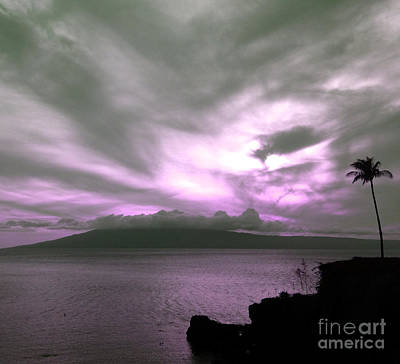 Photograph - Purple Paradise by Krissy Katsimbras