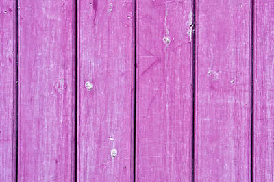 Royalty-Free and Rights-Managed Images - Purple wood by Tom Gowanlock