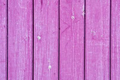 Purple Wood Print by Tom Gowanlock