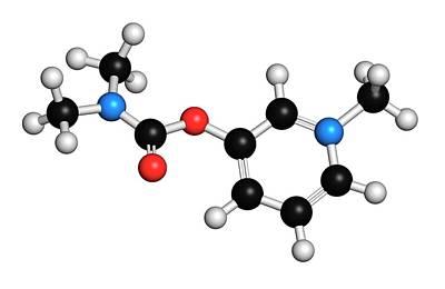 Pyridostigmine Cholinesterase Drug Art Print by Molekuul