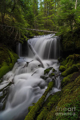Poetic Photograph - Quiet Falls by Mike Reid