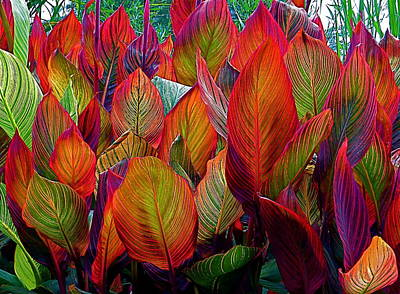 Rainbow Leaves Art Print by Rita Mueller