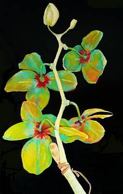Rainbow Orchids Art Print by Jean Cormier
