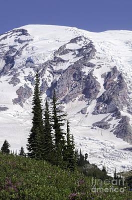 Photograph - Rainier Summit by Sharon Seaward