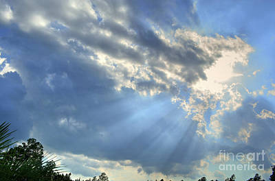 Photograph - Rays From Heaven by Kathy Baccari
