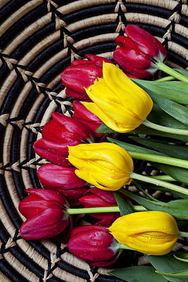 Red And Yellow Tulips  Art Print by Garry Gay
