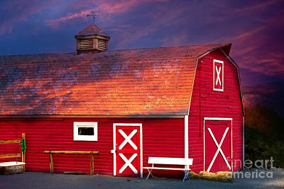 Photograph - Red Barn by Gunter Nezhoda