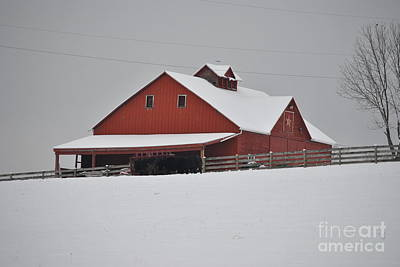 Photograph - Red Barn by Jeffrey Randolph