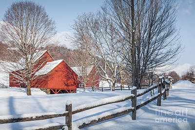 Photograph - Red Barns by Susan Cole Kelly