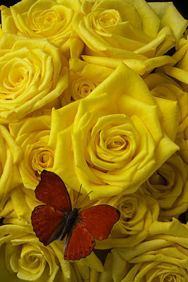 Red Butterfly On Yellow Roses Art Print by Garry Gay