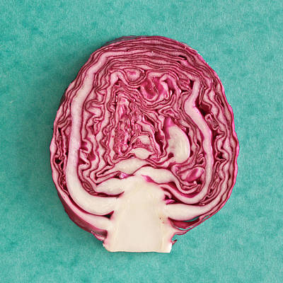 Cabbage Photograph - Red Cabbage by Tom Gowanlock