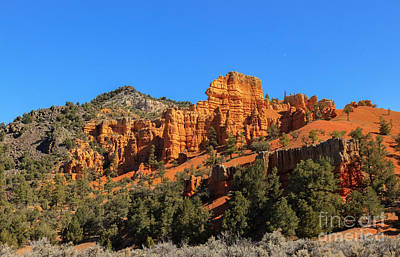 Photograph - Red Canyon by Robert Bales