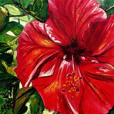 Red Hibiscus Art Print by Maria Soto Robbins