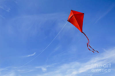 Kites Photograph - Red Kite In The Sky by Diane Diederich