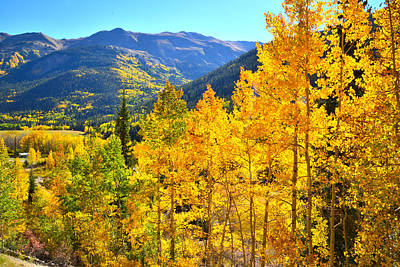 Photograph - Red Mountain Pass Fall by Ray Mathis
