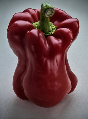 Photograph - Red Pepper by Vladimir Kholostykh