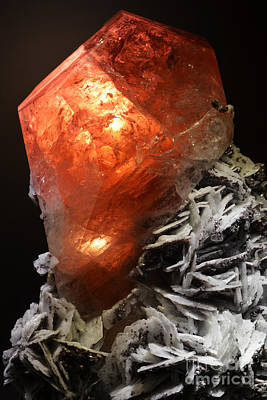 Photograph - Red Rhodochrosite Crystal Macro by Shawn O'Brien