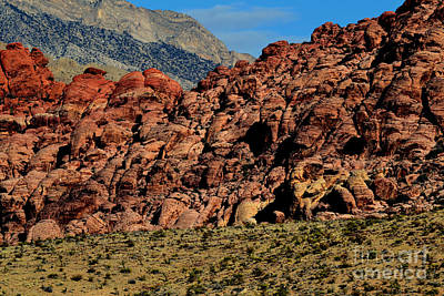 Photograph - Red Rock Canyon 8 by Diane montana Jansson